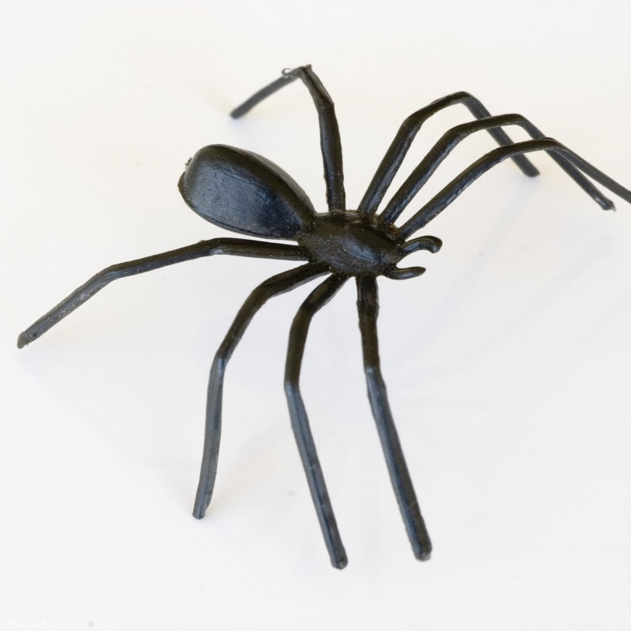 android table squarePlastic Spider