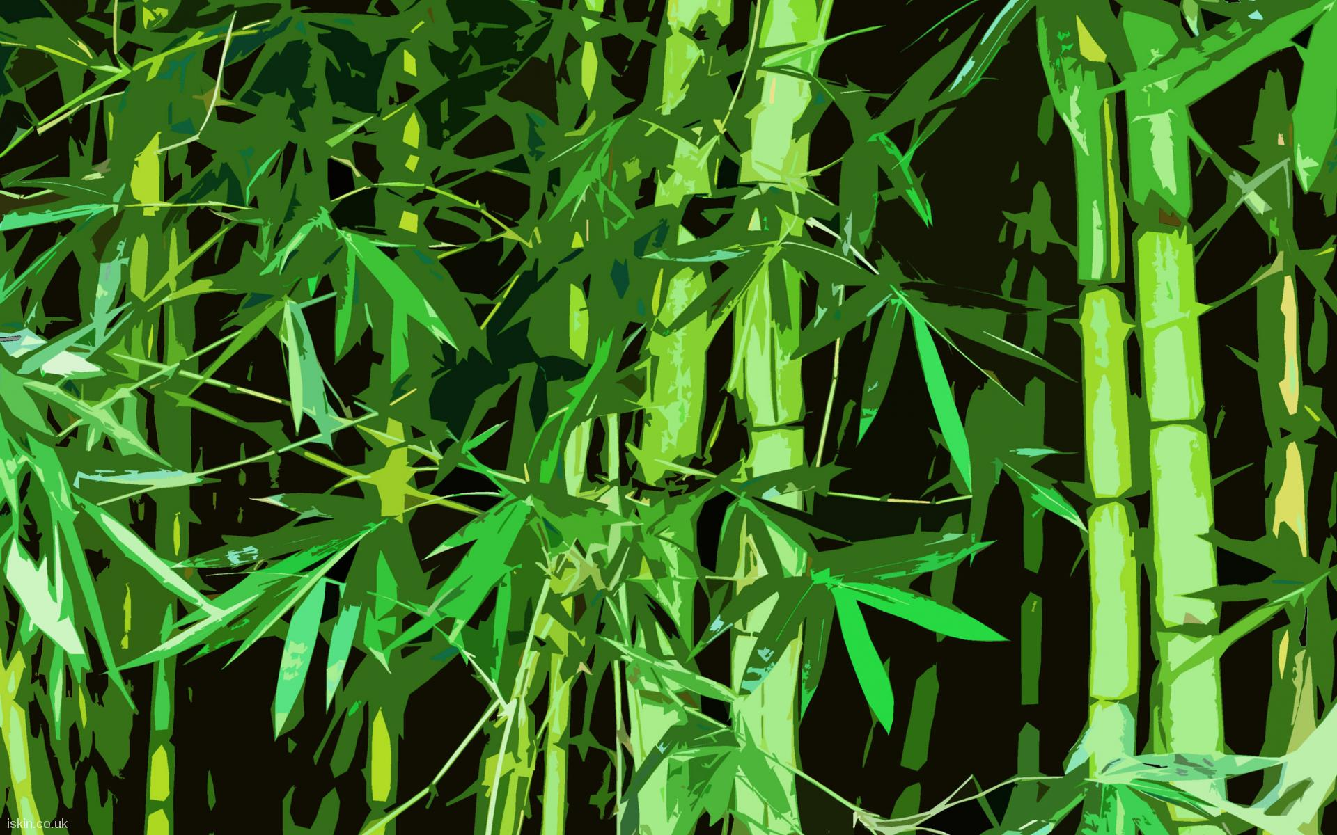desktop image Bamboo Graphic