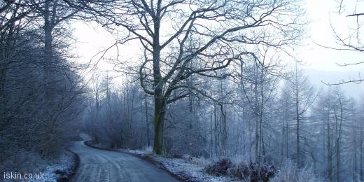twitter header Frosty Lane