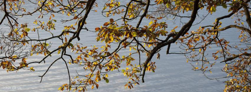 facebook header autumn reflection