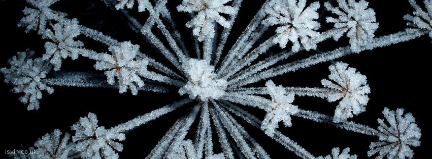 facebook header Frosty Sparkle