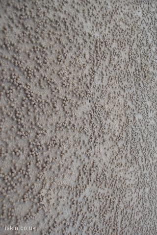 iphone landscape wallpaper Sand Balls